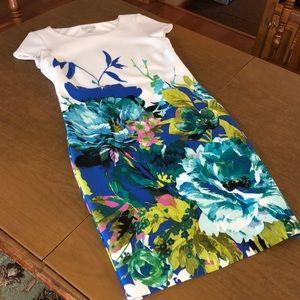 SANDRA DARREN Floral Lined Mid Length Dress Sz 12